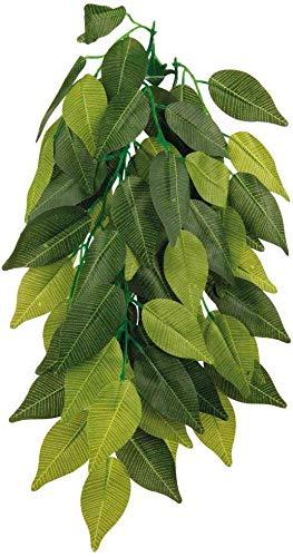Trixie 76239 Seiden-Hängepflanze, Ficus, ø 20 × 30 cm