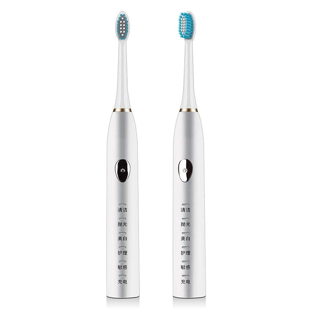 試してみる反対にパズル電動歯ブラシ 電動歯ブラシ磁気サスペンション5速超音波歯ブラシ柔らかい髪誘導充電防水大人 (色 : White)