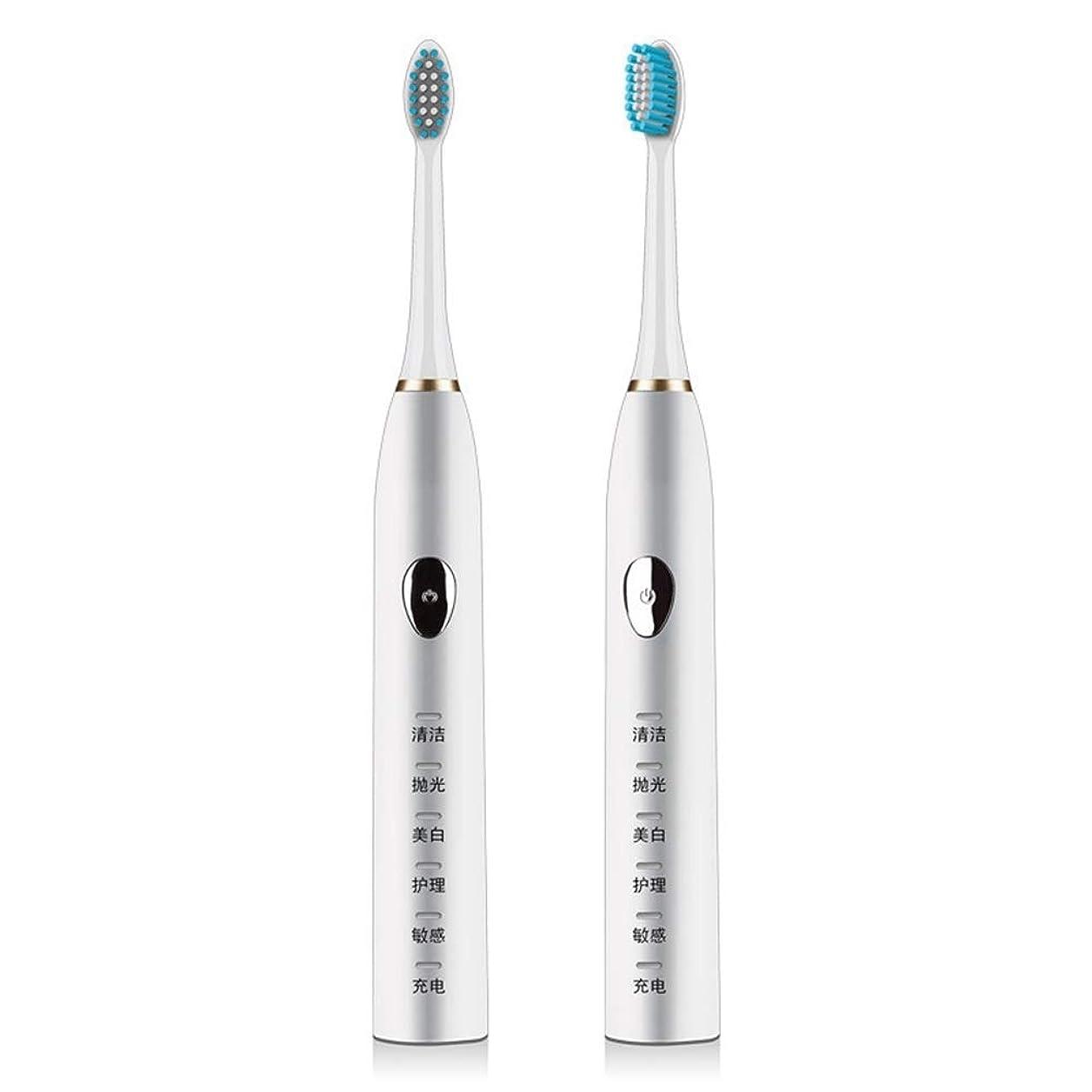LKJASDHL 電動歯ブラシ磁気サスペンション5速超音波歯ブラシ柔らかい髪誘導充電防水大人 (色 : White)