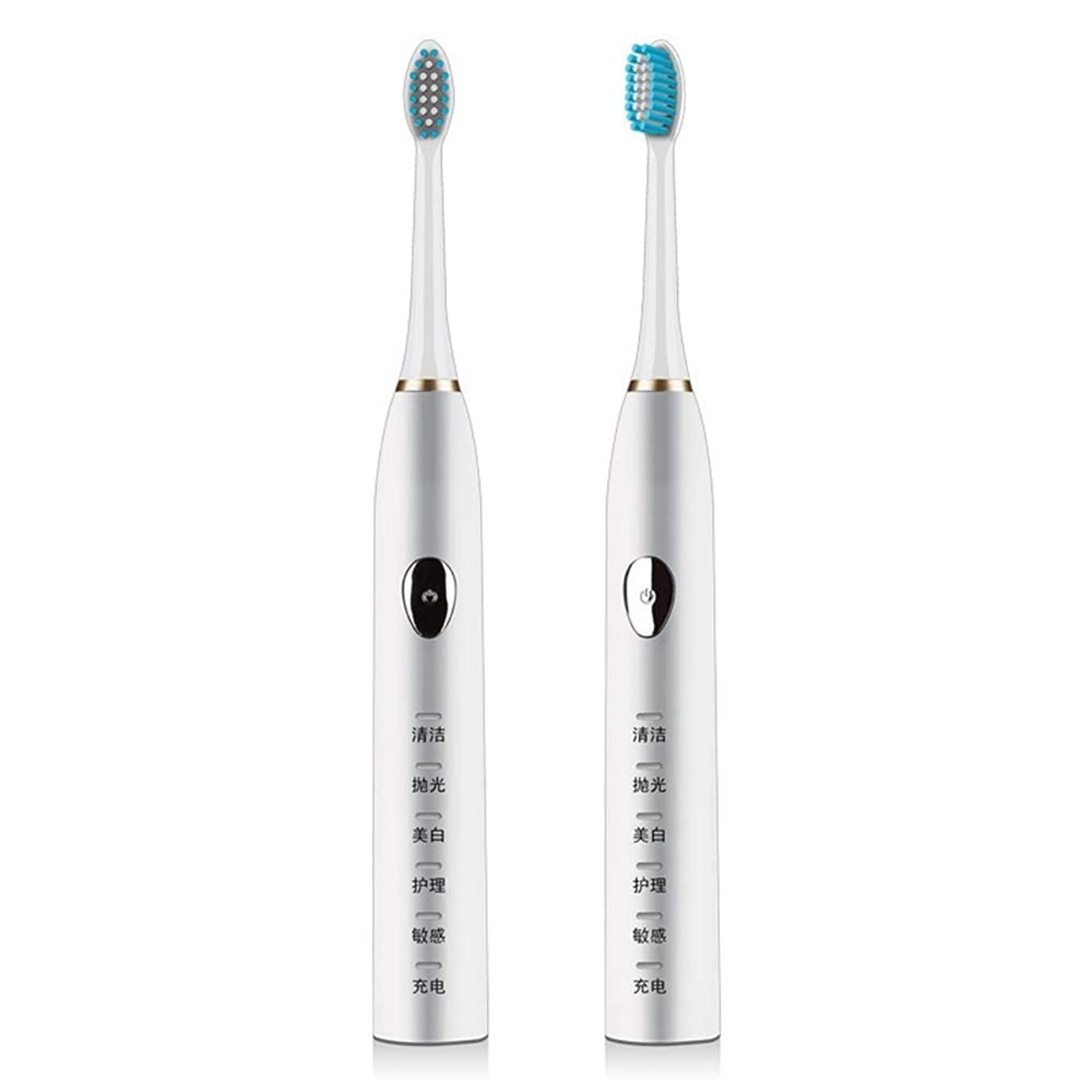 頼るリビジョン形成LKJASDHL 電動歯ブラシ磁気サスペンション5速超音波歯ブラシ柔らかい髪誘導充電防水大人 (色 : White)