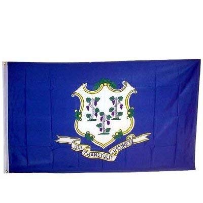 NationalCountryFlags Connecticut State Flag 3x5 3 x 5 Banner