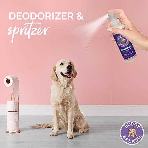 best smelling dog cologne