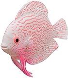 TBNB Decoración de pecera Artificial Faux Fake Gold Fish Efecto Brillante Decoración de pecera de Acuario Adorno Flotante (A)