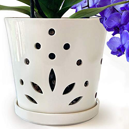 """Atri Ceramic Orchid Pot with Holes – 6.5"""" Decorative Flower Pot with Drainage Hole and Saucer (6""""H x 6.5""""W Top and 5""""W BTM) Promotes Circulation and Deters Over-Watering for Beautiful Blooms"""