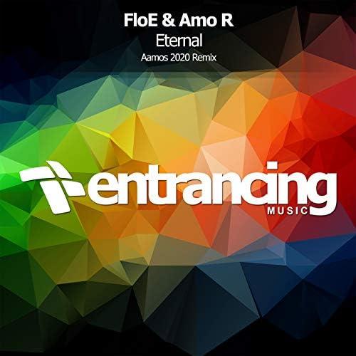 The Floe & Amo R