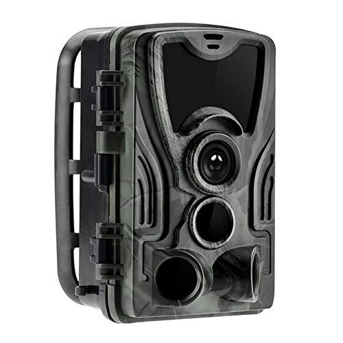 WANGMEILING Jagdkamera wildkamera HC-801A Trail Kameras 0.3s Triggerzeit-Nachtversion Foto Trap 16MP 1080P IP65 Tier-Jagd-Kamera-Überwachung Kameras (Color : Multi)
