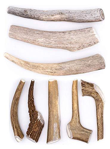 Perfect Pet Chews Deer Antler Dog Chew (D. Medium - Dog Weight 20–40 Lbs, 5 - Pack) and (Medium 3 Count Economy Grade B-C) Bundle