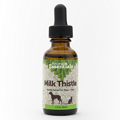 Animal Essentials - Flacon Chardon-Marie santé Traitement Foie Chien/Chat 30 ML