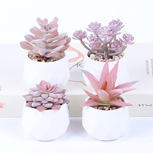 Baixtuo 4er Set Mini Künstliche Sukkulenten Pflanzen, Dekorative Kunstpflanze Bonsai mit Topf,Künstliche Sukkulenten,Kunstpflanzen Klein Deko für Büro, Tische, Balkon, Wohnzimmer, Schlafzimmer