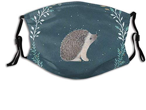 Face Cover Bass Fishing Reusable Windproof Anti-Dust Bandanna Mask with 2 Filter for Teen Men Women-Cute Little Hedgehog-One Size