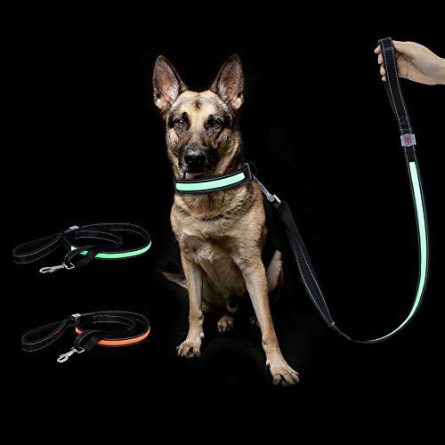 Toozey LED Blinkende Hundeleine mit 3 Blinkenden Modi, USB-Aufladung/Einstellbarer (1,2m-1,5m)/Wasserdichter Nylon-Hundeleine, Hohe Sichtbarkeit und Sicherheit, Erhältlich bei Tag und Nacht, Grün