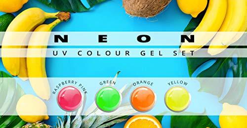 Gel couleur Fluo Lot de 6 nuances-Nail Studio Color Gel UV Set pour la conception des ongles professionnels