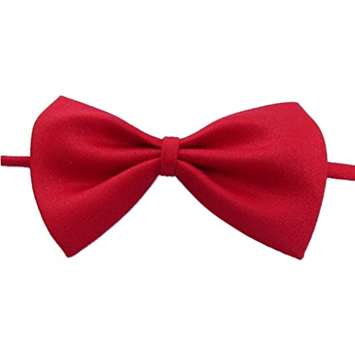 Gemini _ Mall collare regolabile Bow Tie cravatta per cane gatto