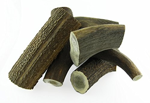 ARTISAN GIFT CO Naturally Shed 100% Natural Red Deer Antler Dog Chew – Extra Large (XL) min. weight 225 grams - 1 piece