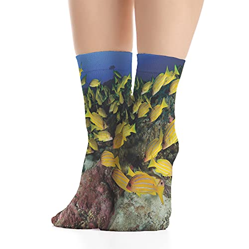 Men's and Women's Fashion,Tropical Fish on a Coral Reef Hawaiian Ocean Floor Environment Animals in World