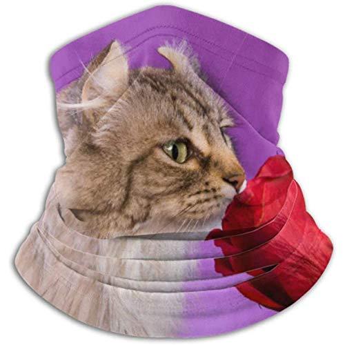 Linger In Cache-Cou Beau Chat Highlander sentant l'écharpe Rose Rouge, Cache-Cou, Cache-Cou Demi-Masque Cagoule Coiffe