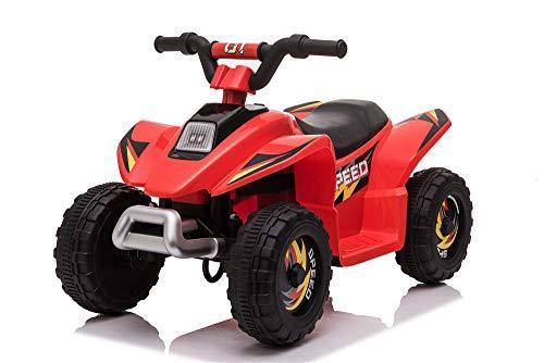 FP-TECH Quad Elettrico per Bambini 2WD LUCI Suoni...
