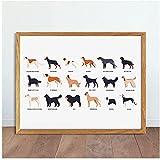 VVBGL Divertidos Perros Lindos de Diferentes Razas póster Imprime Mascotas de Raza Pura Animales Lie...