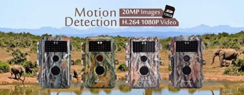 Blazevideo Beutekamera Wildkamera Trail Camera Erfahrungen & Preisvergleich
