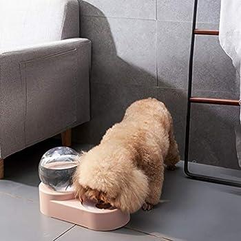 Balacoo Mangeoire Automatique pour Chien et Chat avec Bol à Eau et Bol à Nourriture – Distributeur d'eau à gravité Double pour Animal Domestique pour Chiot (Bleu)