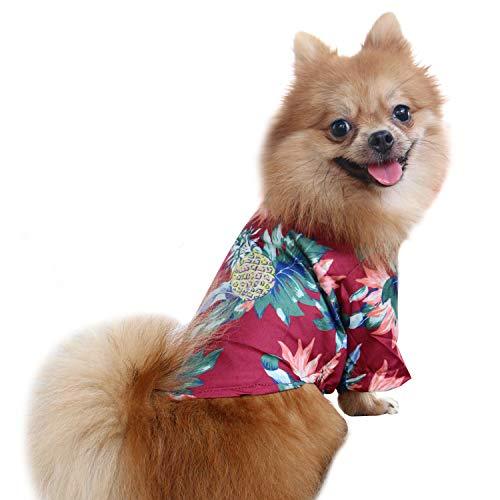 QiCheng & LYS Camisa para perroscamisa,para Perros de Moda, Camisa para Perros con Flores, Adecuada para Perros pequeños y medianos (Rojo, Medium)