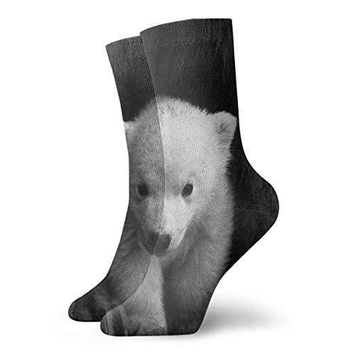 Cute Baby White Bear Calcetines cortos para adultos Algodón Gimnasio Clásico Ocio Deporte Calcetines cortos Adecuado para hombres Mujeres Calcetines deportivos Calcetines cómodos transpirables Casuale