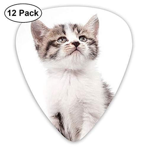 Cute Cat Guitar Picks 12 Packs - Variety Púas de guitarra Plectrums para bajo, guitarras acústicas eléctricas-0I4-C9