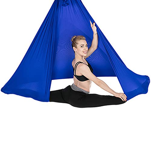 MZP Indoor Therapy Swing for Kids with Special Needs Breathable Hammock Durable Calming Cuddle Chair Autistic Children Up to 200kg (Color : Royal Blue, Size : 150x280cm)
