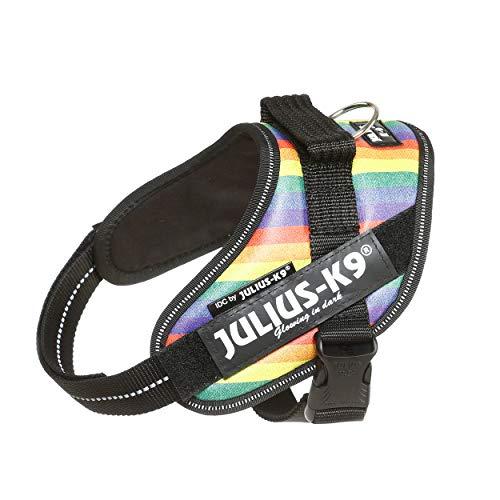 Julius-K9 16IDC-JRBW-M IDC Powerharness, Dog Harness, Size Mini, Rainbow
