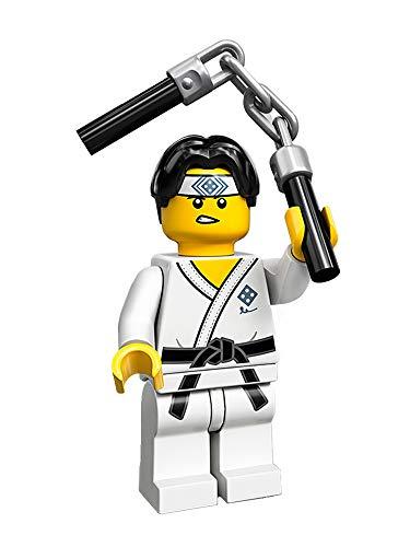 LEGO Minifigures Collectible Serie 20 (71027) - Martial Arts Boy