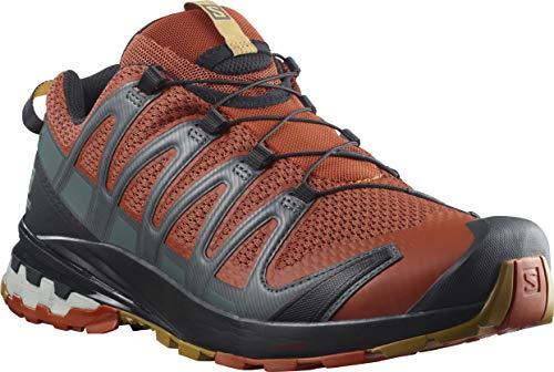 Salomon Herren Xa Pro 3d V8 Trail Running Shoe, Rot Rooibos Tea Black Cumin, 44 EU