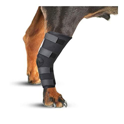 BSQJ Mascota codera, Joint Wrap Canina Protege cicatrización de Las heridas, Ayuda a la Estabilidad Heal Perro Aparato ortopédico de Pierna, (2 Pack) (Tamaño: M) 827 (Size : L)