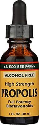 Y.S. Eco Bee Farms, Propolis, High Strength, Alcohol Free, 1 fl oz (30 ml)