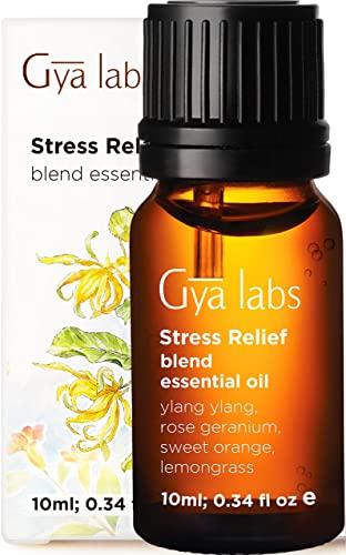 Mezcla de aceites esenciales para aliviar el estrés - Grado terapéutico para difusor, mente de almeja y relajación - Ylang Ylang, naranja dulce, hierba de limón, geranio rosa - 10 ml (0,34 oz)