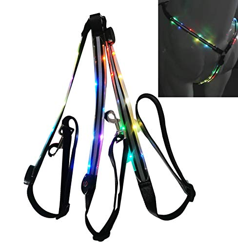 NEFTF LED Horse Breastplate Collar Bridle Halter High Visibility Tack for Night Horse Riding (Colorful Changing)