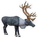 1/3 Scale Woodland Caribou Target