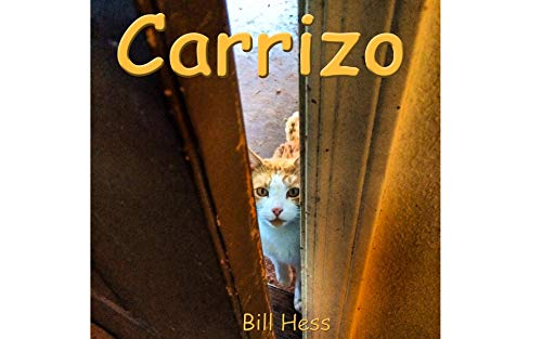 Carrizo: A village, A Cat, A Cat-Killer Dog, A Christmas Story (Cat books Book 2) (English Edition)