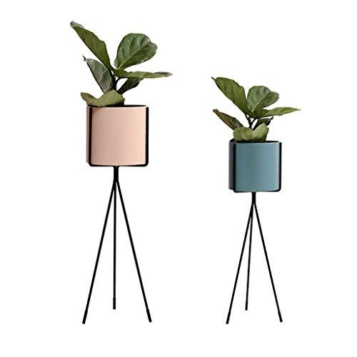 Un Ensemble De 2 Fleur Stand Sol en Fer Forgé Support Pot Rack Plante Salon Balcon DéCoration Support De Rangement