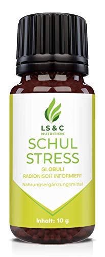 Schulstress Globuli | Beruhigung | Angst | Stress | Konzentration | Burnout | radionisch informiert...