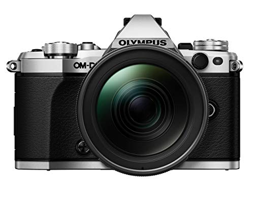 Olympus OM-D E-M5 Mark II Kit, Micro Four Thirds systeemcamera en M.Zuiko Digital ED 12-40 mm F2.8 PRO universele zoom, zilver/zwart