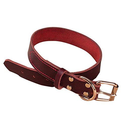 KHFFH huisdier hond kraag, verstelbaar zacht suède leer kleine middelgrote en grote honden massief legering gesp donker bruin zwarte wijn rode huisdier riem, XXXL, 2