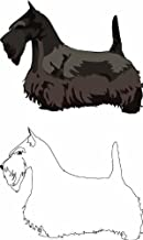 Scottish Terrier Grooming (Scottish Terrier Grooming, Scottish Terrier Grooming)