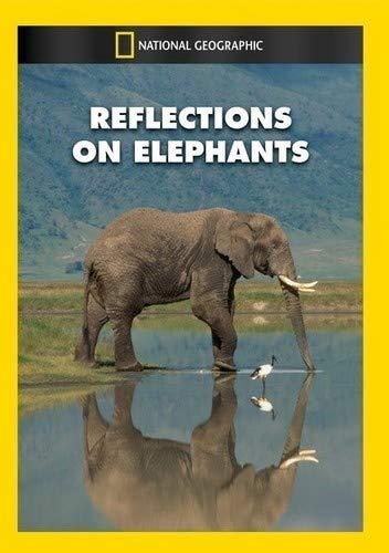 Reflections On Elephants [Edizione: Stati Uniti] [USA] [DVD]