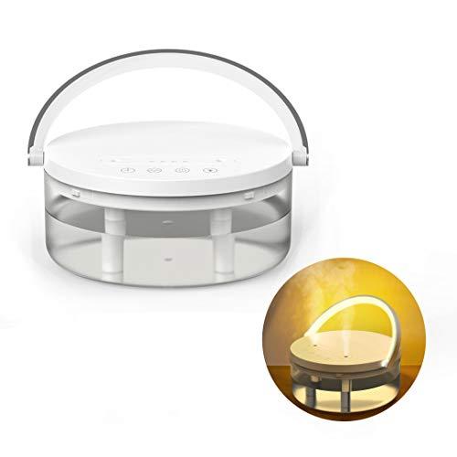 R FLORY Luftbefeuchter mit Doppeldüse, 1,2 l, 16–20 Stunden Nachtlicht, kabellos, automatische Abschaltung, ultra-leiser Timer, Luftkühlung Luftbefeuchter