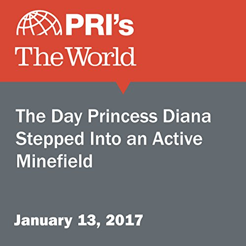 The Day Princess Diana Stepped Into an Active Minefield cover art