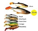 Savage Gear 3D River Roach - 2 Gummifische Rotauge zum Spinnfischen, Gummiköder zum Hechtangeln, Hechtköder, Gummishad, Swimbait, Softbait, Farbe:Roach (Rotauge), Länge/Gewicht:18cm - 70g