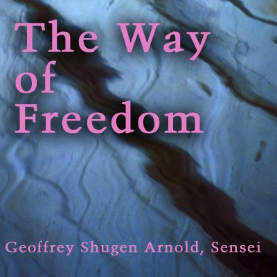 The Way of Freedom audiobook cover art