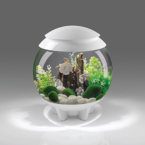 biOrb Halo 30 Aquarium with MCR Lighting - 8 Gallon, White