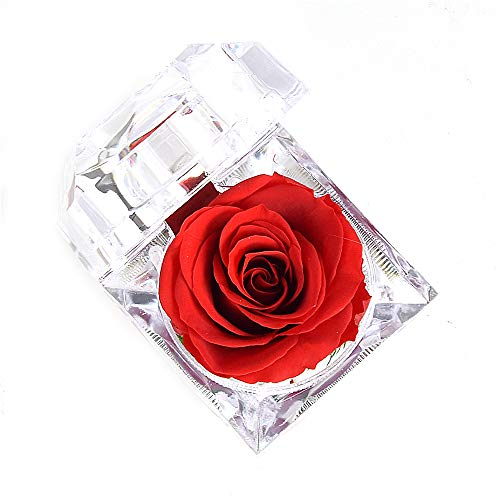 Luoistu Ewige Rose handgemachte frische Blume echte Rosen in Kristall Acryl Ring Box für Weihnachten, Jubiläum,Erntedankfest,Geburtstag,Hochzeit Geschenke (Rot)