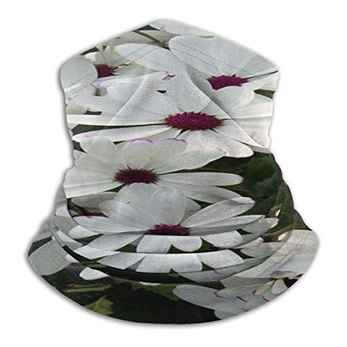 xiaohei 40 Cm / 50 Cm / 60 Cm / 70 Cm / 80 Cm Grande Fleur Artificielle en Soie Tête Rose pour La Décoration Murale De Fond De Mariage 5 Couleurs Fleur Bac